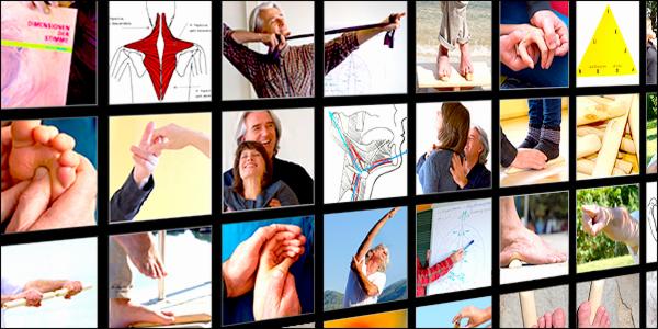 https://www.heptner.org/media/Galerie/ausbildungscollage_1.jpg